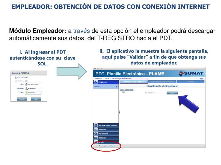 EMPLEADOR: OBTENCIÓN DE DATOS CON CONEXIÓN INTERNET