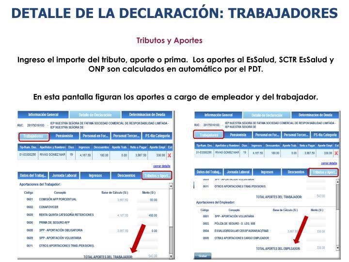 DETALLE DE LA DECLARACIÓN: TRABAJADORES