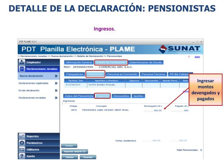 DETALLE DE LA DECLARACIÓN: PENSIONISTAS