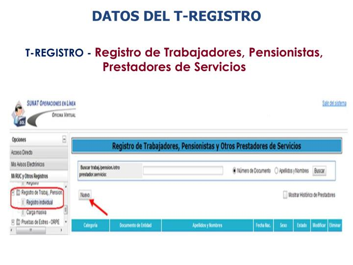 DATOS DEL T-REGISTRO