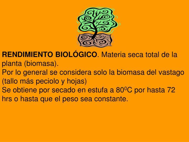 RENDIMIENTO BIOLÓGICO