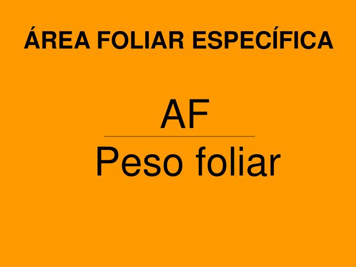 ÁREA FOLIAR ESPECÍFICA