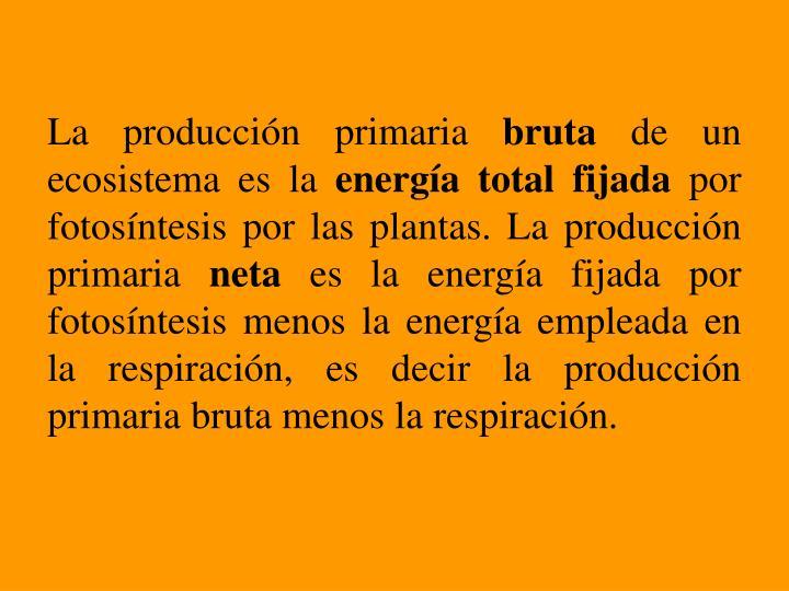 La producción primaria