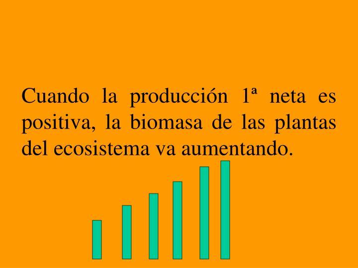 Cuando la producción 1ª neta es positiva, la biomasa de las plantas del ecosistema va aumentando.