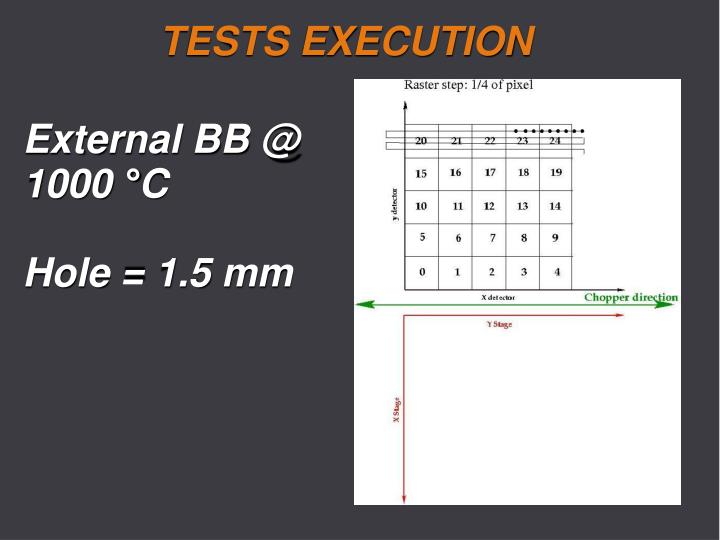 TESTS EXECUTION