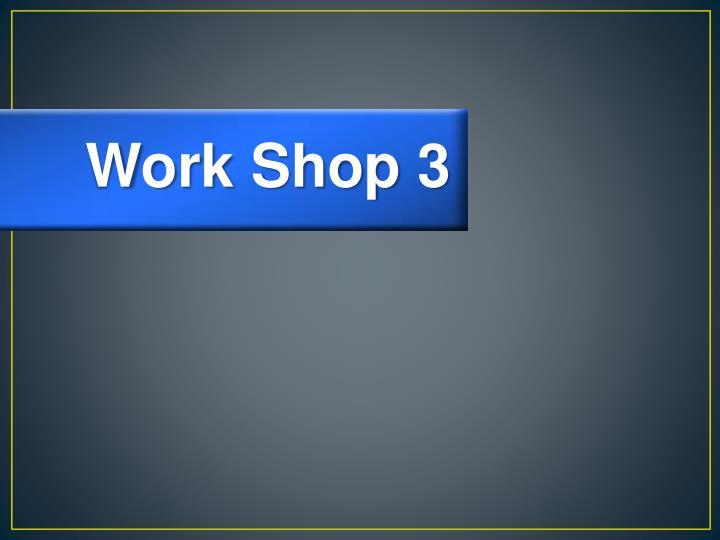 Work Shop 3