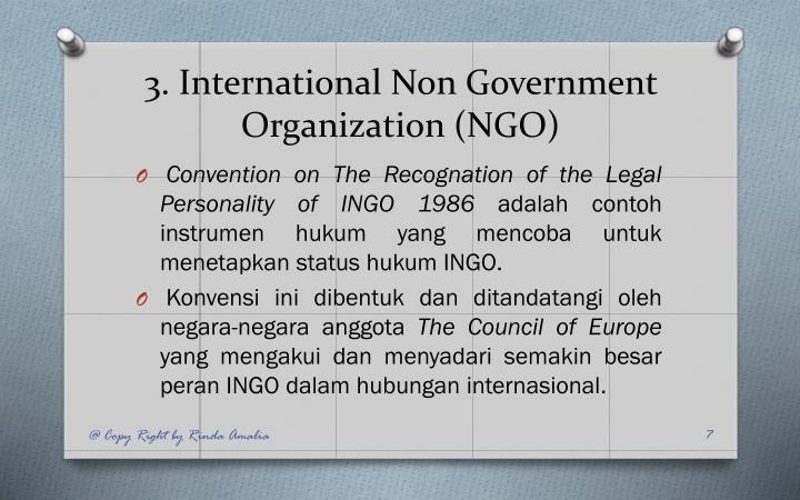 3. International Non Government Organization (NGO)