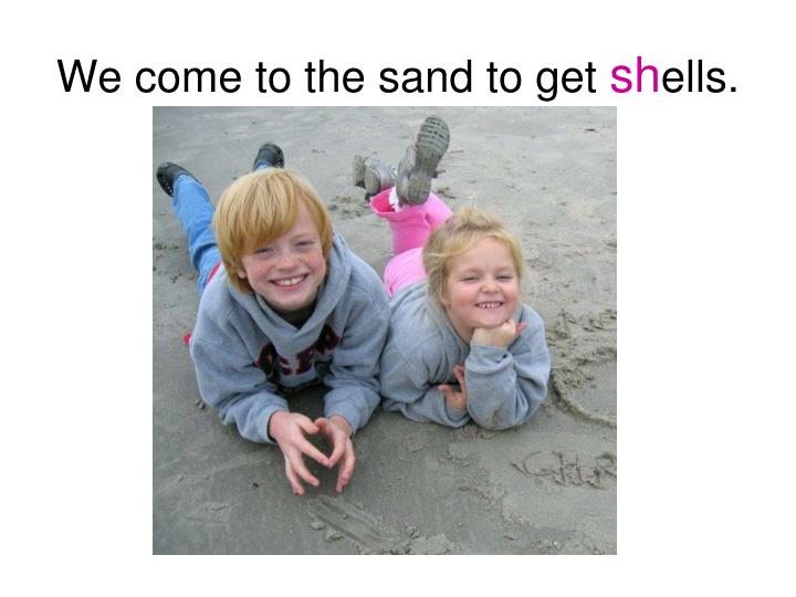 We come to the sand to get sh ells