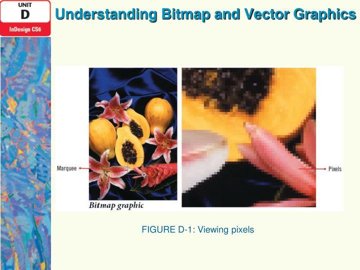 Understanding Bitmap and Vector Graphics