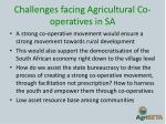 challenges facing agricultural co operatives in sa1