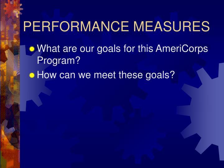 performance measures n.