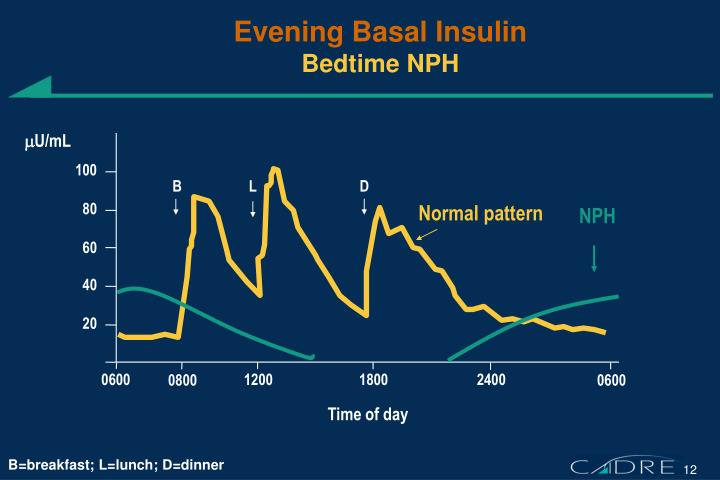 Evening Basal Insulin