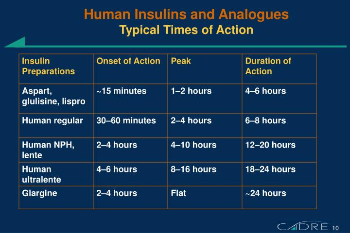 Human Insulins and Analogues