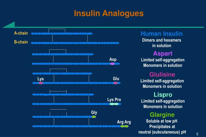 Insulin Analogues