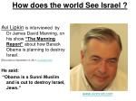 how does the world see israel