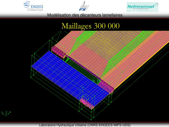 Maillages 300 000