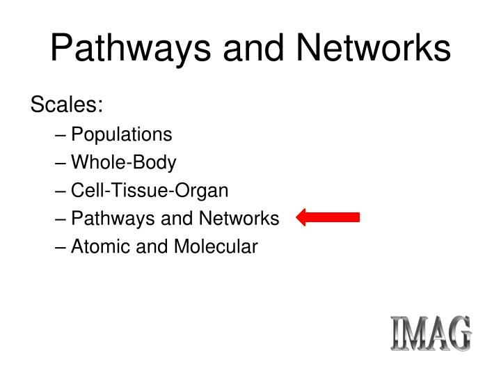 Pathways and networks2