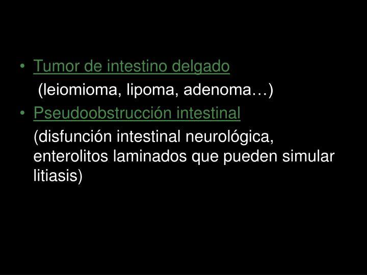Tumor de intestino delgado