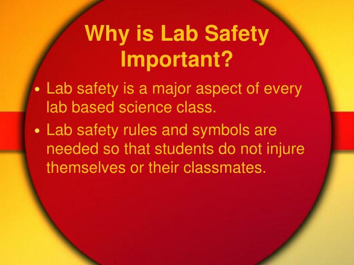 why are lab rules important