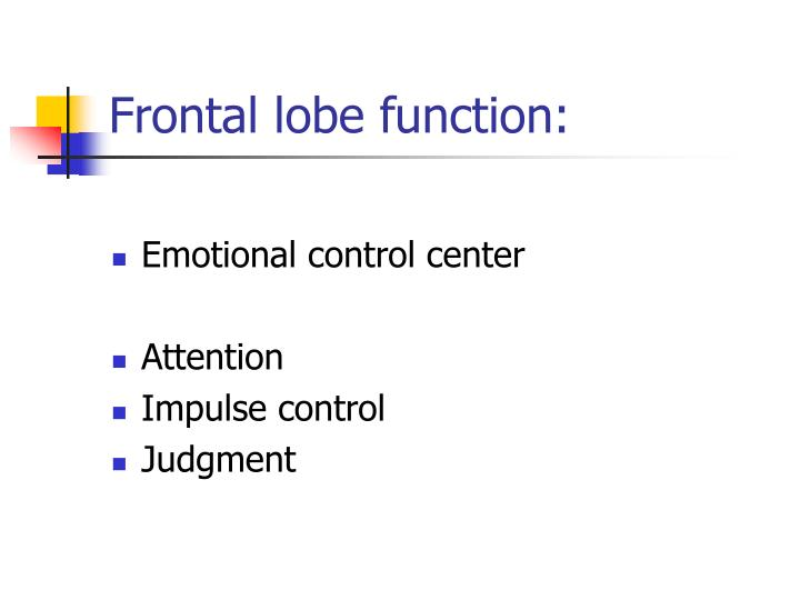 Frontal lobe function: