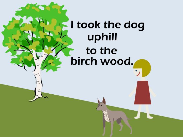 I took the dog