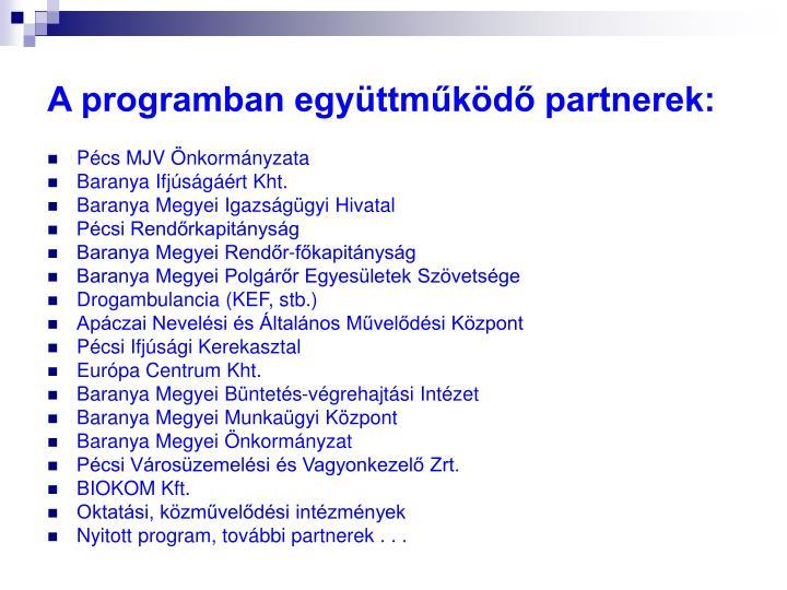 A programban együttműködő partnerek: