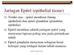 jaringan epitel epithelial tissue