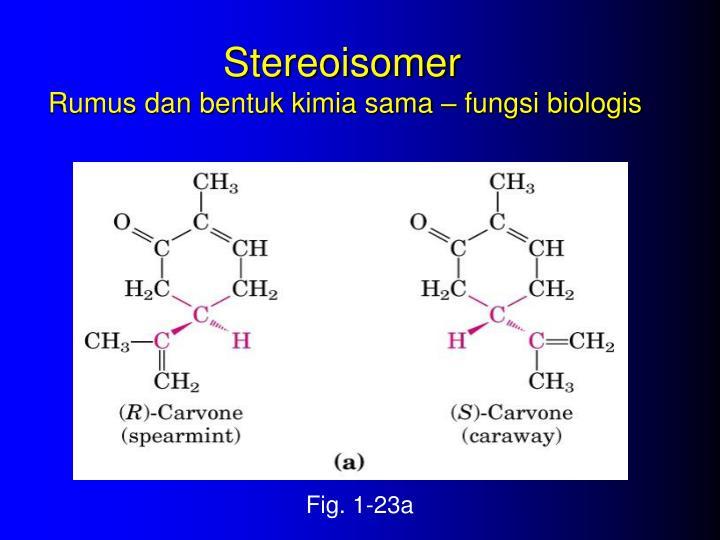 Stereoisomer
