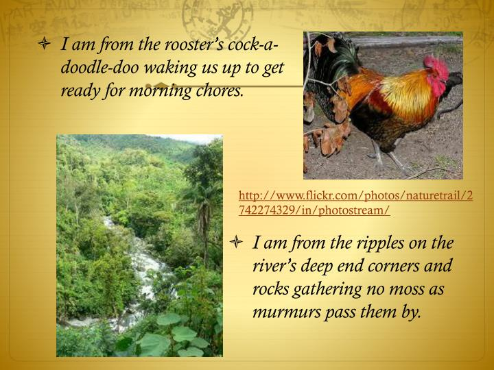 I am from the ripples on the river's deep end corners and rocks gathering no moss as murmurs pass ...