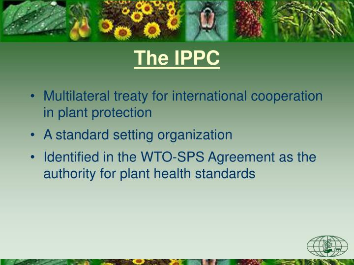 The ippc