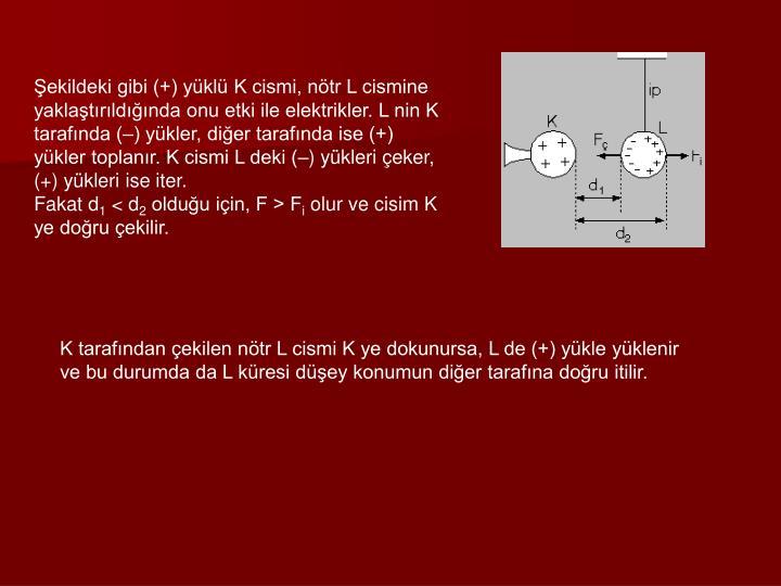 Şekildeki gibi (+) yüklü K cismi, nötr L cismine yaklaştırıldığında onu etki ile elektrikler. L nin K tarafında (–) yükler, diğer tarafında ise (+) yükler toplanır. K cismi L deki (–) yükleri çeker, (+) yükleri ise iter.