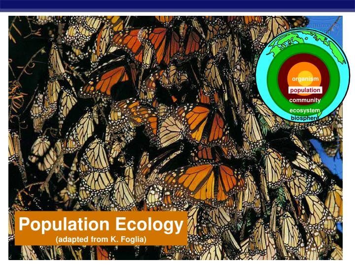 PPT Population Ecology Adapted From K Foglia PowerPoint