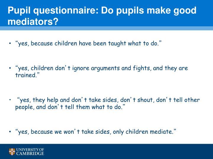 Pupil questionnaire: Do pupils make good mediators?