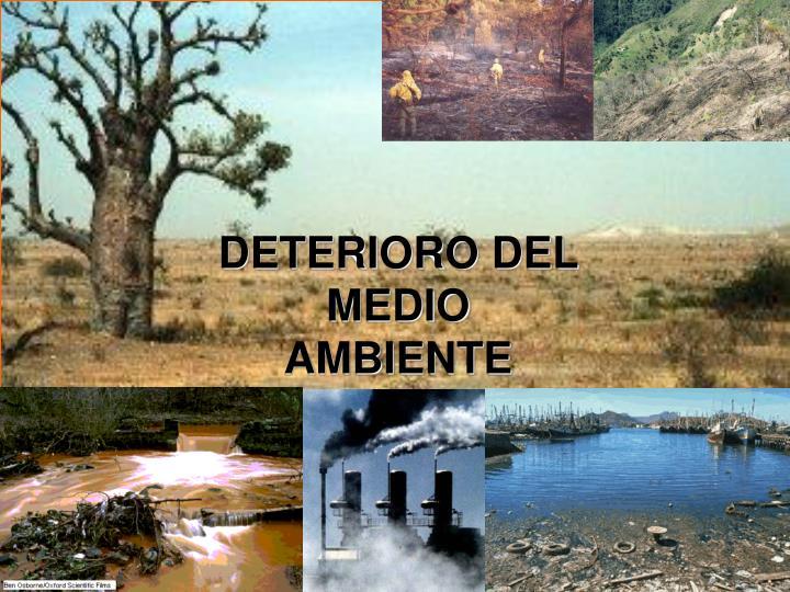 DETERIORO DEL MEDIO AMBIENTE
