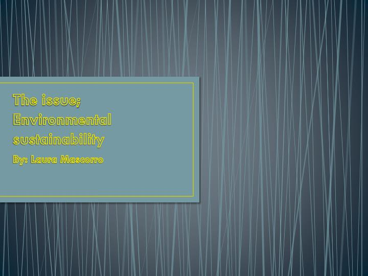 the issue environmental sustainability n.