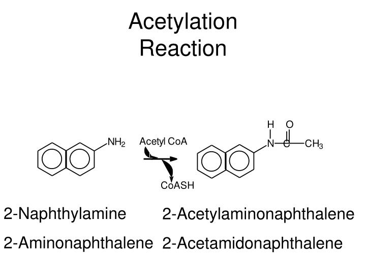 Acetylation