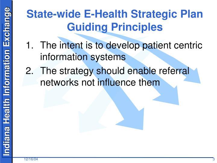 State wide e health strategic plan guiding principles