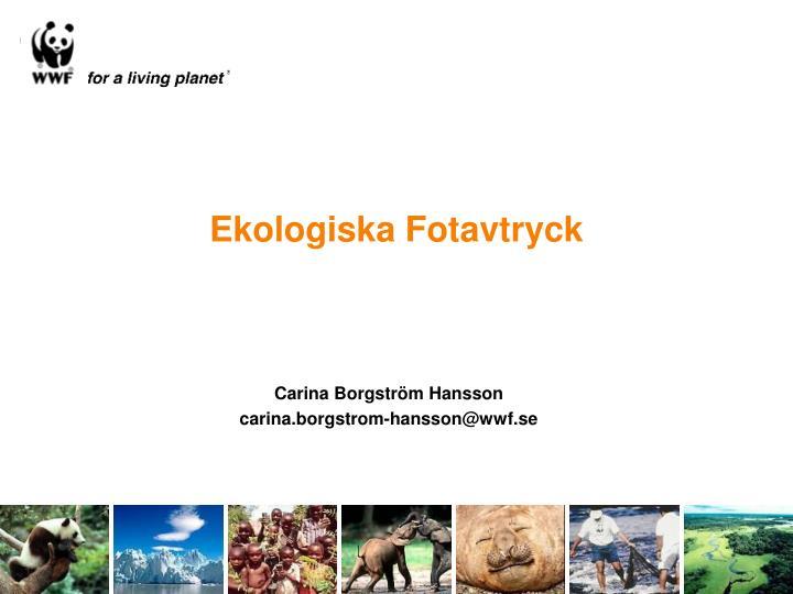 ekologiska fotavtryck n.