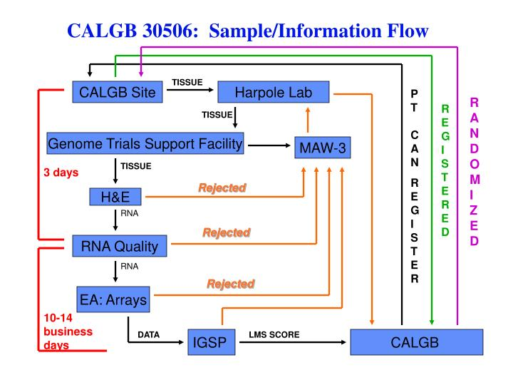 CALGB 30506:  Sample/Information Flow