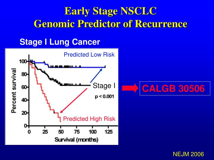 Early Stage NSCLC