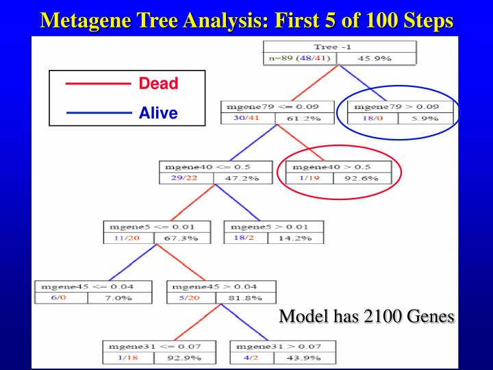 Metagene Tree Analysis: First 5 of 100 Steps