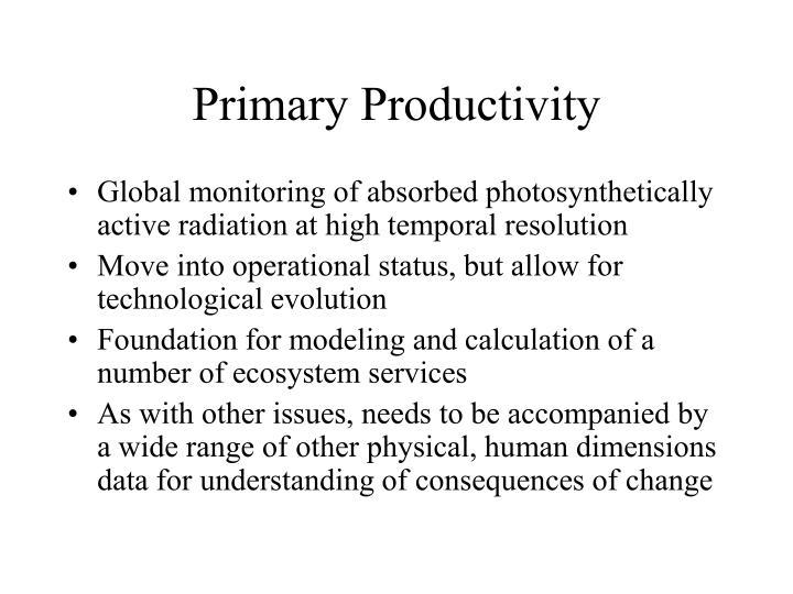 Primary Productivity