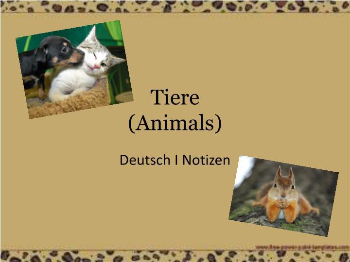 tiere animals n.