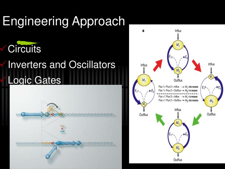 Engineering Approach