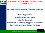 business and industry guaranteed loan program
