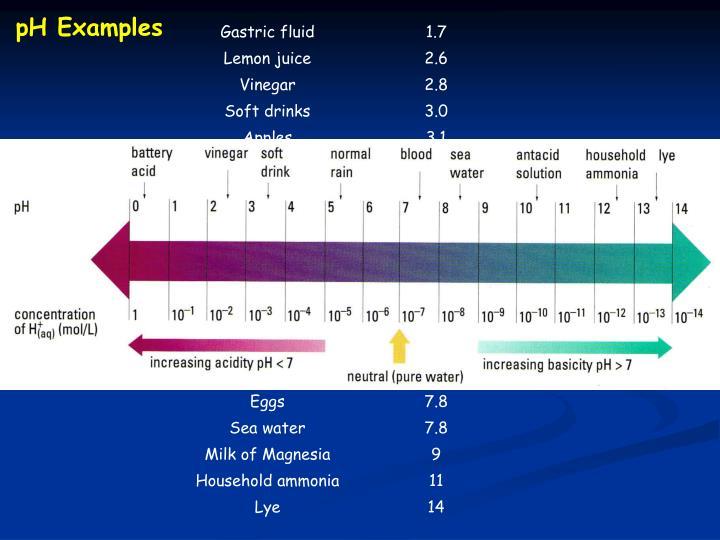 pH Examples
