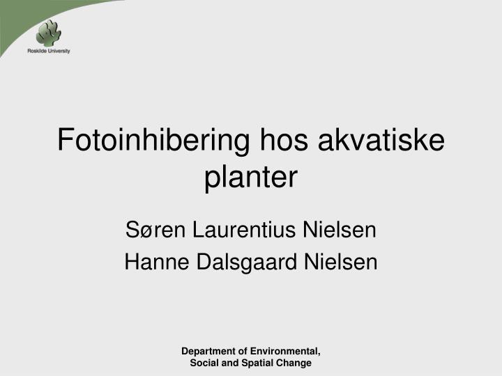 fotoinhibering hos akvatiske planter n.