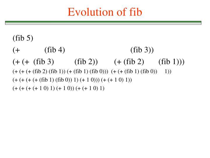 Evolution of fib