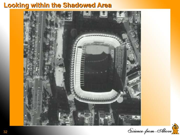 Looking within the Shadowed Area