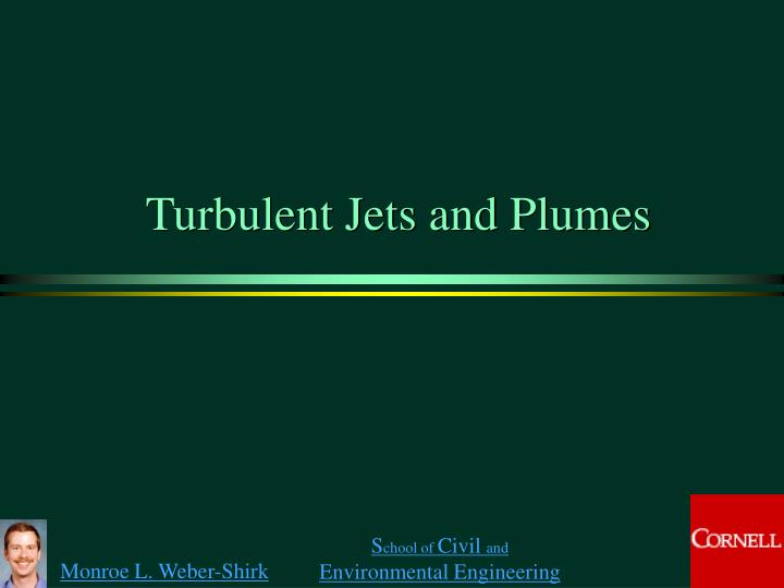 turbulent jets and plumes n.